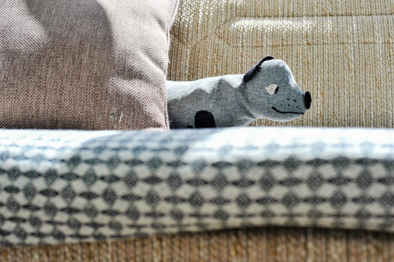 Hund i sofa i Villa Dammen